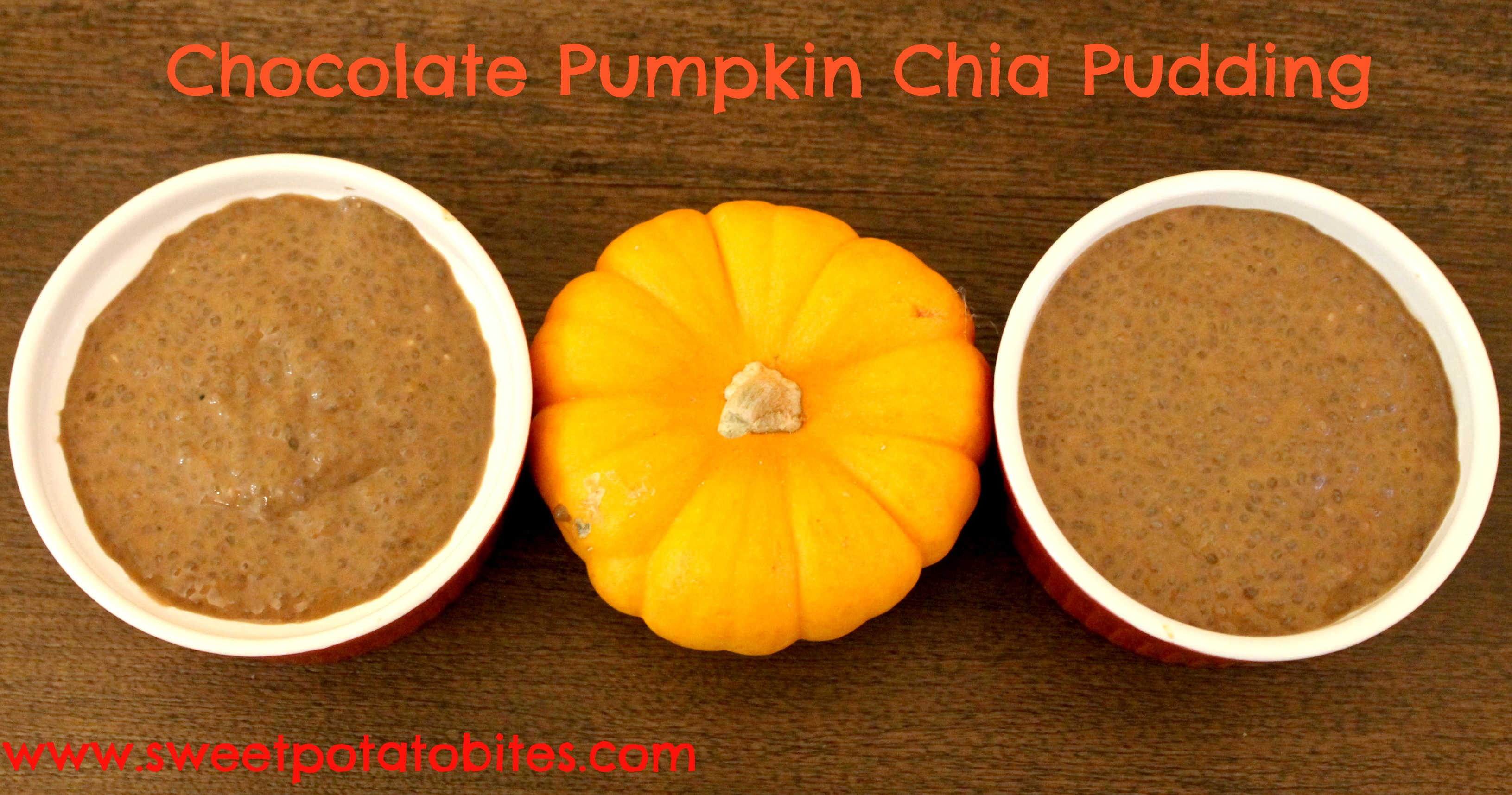 Chocolate Pumpkin Chia Pudding pin