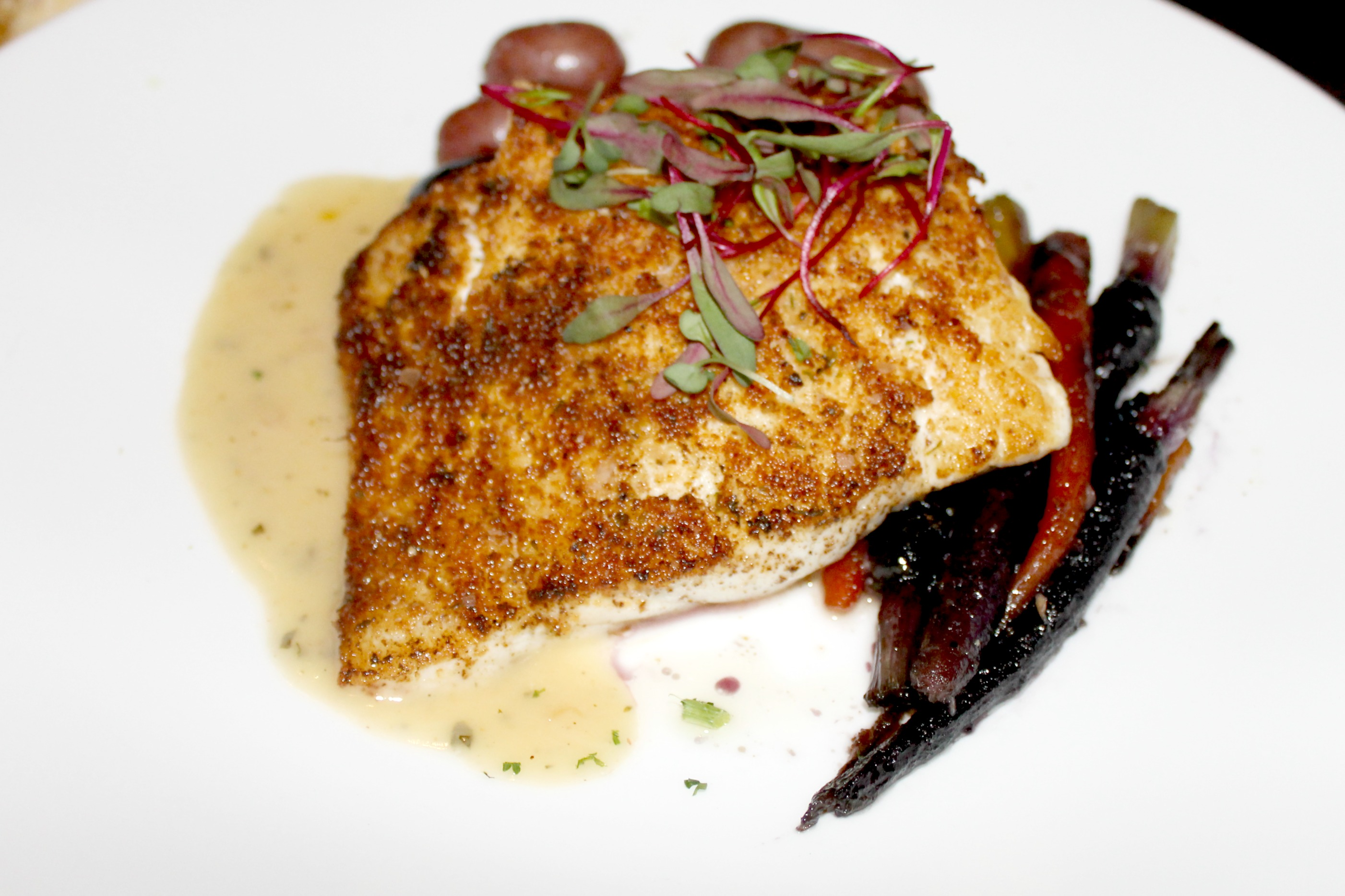 tommy bahama halibut