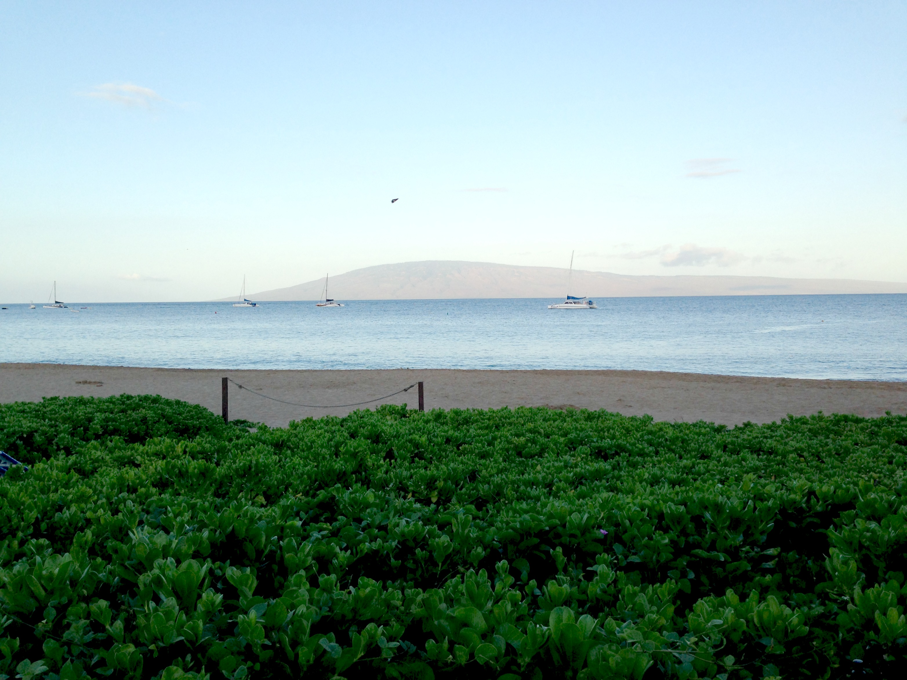 breakfast at the sheraton maui ocean