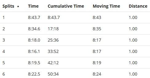 big sur half marathon miles 1-6