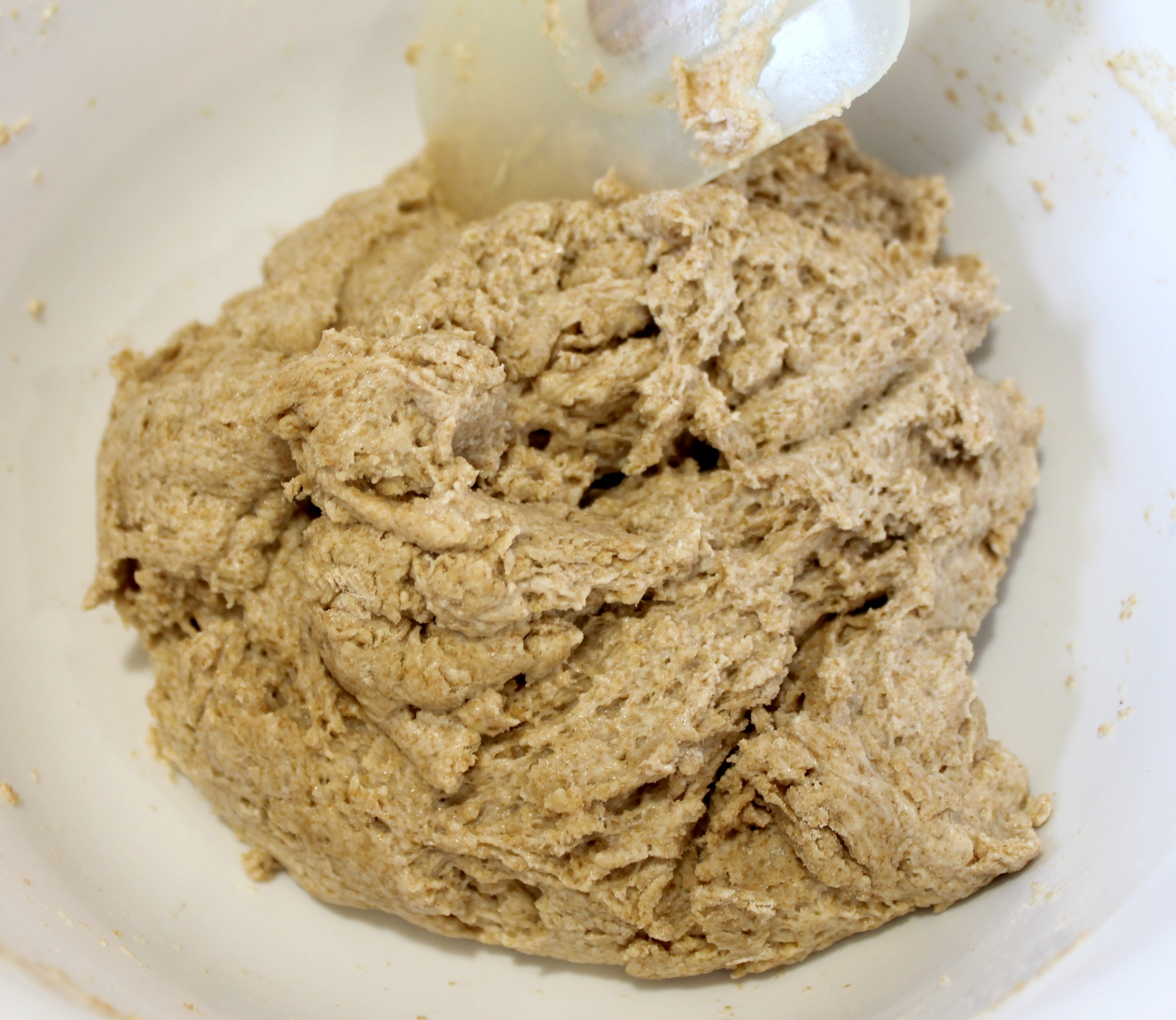whole wheat biscuit dough